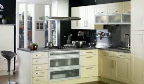 modern kitchen cabinets online cabinet amusing kitchen cabinets online ideas infatuate kitchen