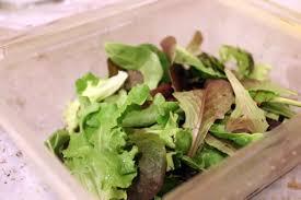 keto mixed green spring salad ruled me