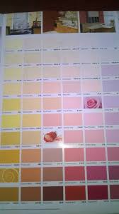 nippolac paint color card facebook