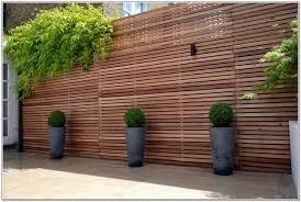 Privacy Ideas For Backyard Download Privacy Screen Backyard Solidaria Garden