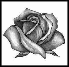 rose with banner tattoo drawing urldircom