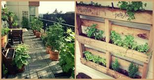 a balcony vegetable garden body in balance