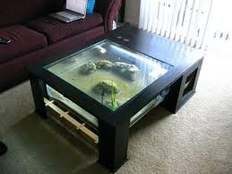 coffee table aquarium freshwater aquarium mos fireplace coffee table diy eclipse 1 24 x