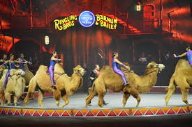 Barnes And Bailey Circus Ringling Bros Barnum U0026 Bailey Circus Xtreme Photos And Review