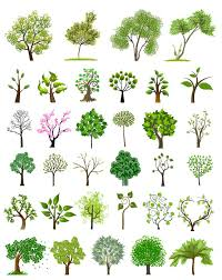 different trees creative design vector vector plant free