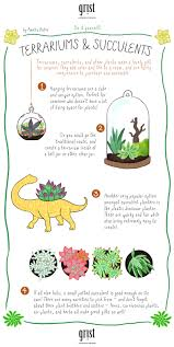 how to make your true love a sweet succulent terrarium grist