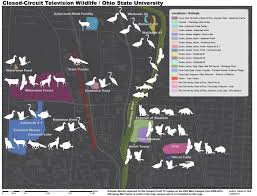 Ohio State University Campus Map by Surveillance Cam Animals Biopresence Animalosu