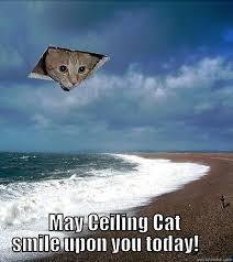 Ceiling Cat Meme - ceiling cat happy birthday quickmeme