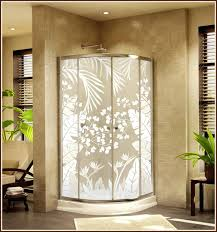 Decorative Shower Doors Decorative Glass Shower Door Limette Co