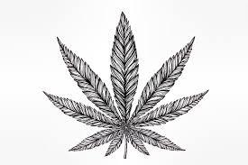 marijuana tattoos allweednews