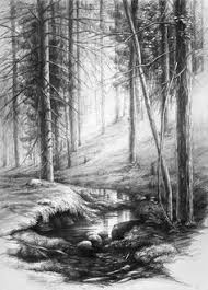 photos amazing pencil sketches of nature drawing art gallery