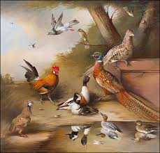edward hasell mccosh traditional painter paintings pheasants