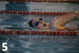 gala 2015 photos eckington swimming club
