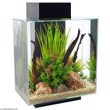 fluval led light 48 fluval edge 46l led black seahorse aquariums ltd
