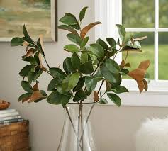 Pottery Barn Christmas Decorations Australia by Http Www Potterybarn Com Products Holiday Magnolia Branch Pkey