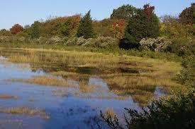 Rhode Island landscapes images Home rhode island division of planning jpg