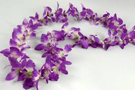flower leis purple orchid flower leis