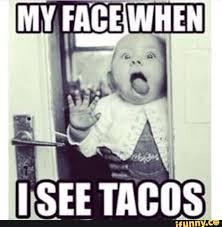Taco Memes - taco tuesday dump album on imgur