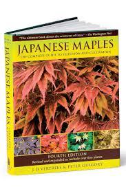 top 6 japanese maple varieties southern living