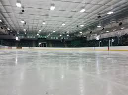 Backyard Ice Rink Plans by Braemar Ice Arena