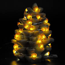 Diy Rope Light Christmas Decorations by Acorn Rope Lights String 10 Ft 40 Leds With Remote For Covered