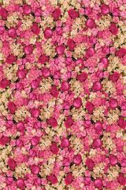 wedding backdrop outlet 6107 printed wall of roses floral pattern backdrop backdrop