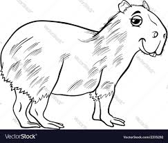 capybara animal cartoon coloring page royalty free vector