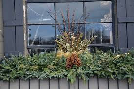 Plants For Winter Window Boxes - winter containers dirt simple part 5