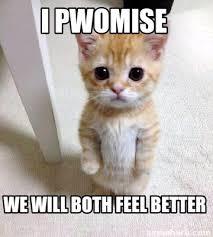 Feel Better Meme - feel better meme bigking keywords and pictures