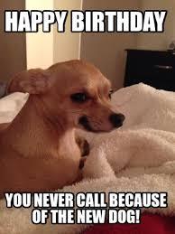 Chihuahua Meme - meme creator chihuahua meme generator at memecreator org
