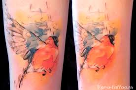 150 watercolor tattoos photos designs for men and women