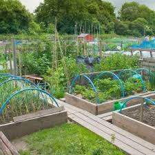 small vegetable garden layout ideas awesome vegetable garden