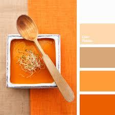 color combinations with orange monochrome color palette of orange color palette ideas