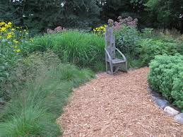 don t overlook the subtle of ornamental grasses tribune