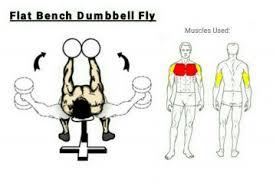 Flat Bench Db Fly Monday Chest Triceps Abs Guruwear Formula