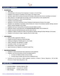 Secretary Resume Template Professional Curriculum Vitae Resume Template For All Job