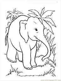 elephant coloring 12 coloring free elephant coloring
