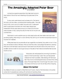bear article