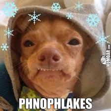 Lisp Meme - lisp dog phnophlakes humoar com