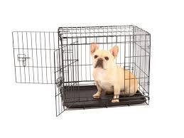 carlson pet double door pet crate u0026 reviews wayfair