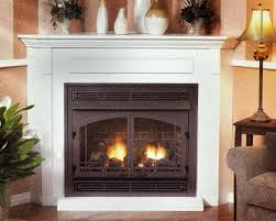 direct vent zero clearance gas fireplace home design popular