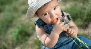 how to get your toddler to eat more healthy food babycenter