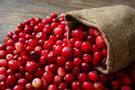 eat an helping of cranberries on thanksgiving mentor