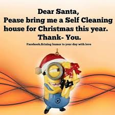Cleaning House Dear Santa Bring Me A Self Cleaning House This Year Pictures