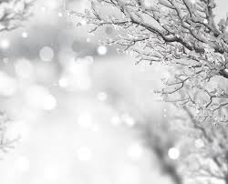 free photo snow tree abdel rahman sparkle free image on