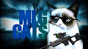 backgrounds mlg clash of clans mlg cats youtube