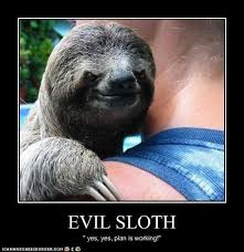 Angry Sloth Meme - 41 best sloths images on pinterest funny animal funny animals and