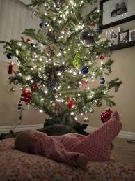 Christmas Tree Cataract Surgery by Quinn Kristi Lila Ruby And Edison November 2010