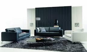 White Couch Living Room Black White Livingroom Design Ideas Grinders Warehouse Living