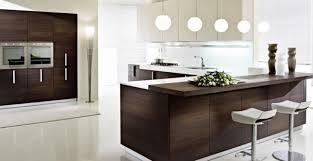 terrific design blind corner kitchen cabinet ideas trendy under